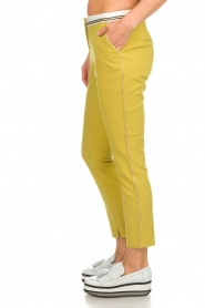 Aaiko |  Pants Parat | ochre yellow  | Picture 4