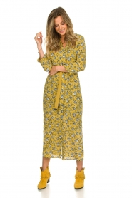 Aaiko |  Maxi dress Seleni | ochre yellow  | Picture 3