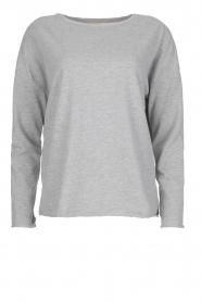 Juvia | Sweatshirt Sue | grijs  | Afbeelding 1
