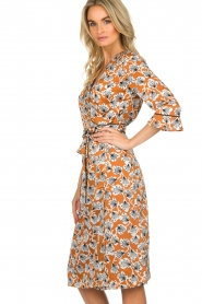 Aaiko |  Dress with print Inez | camel  | Picture 4