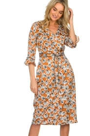Aaiko |  Dress with print Inez | camel  | Picture 2