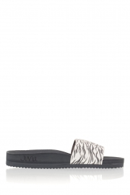 Juvia |  Flip-flops Zebra | black & white  | Picture 1