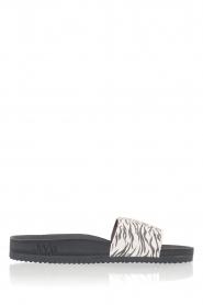 Juvia |  Flip-flops Zebra | black & white  | Picture 2