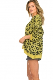 Aaiko |  Cardigan with leopard print | yellow  | Picture 5