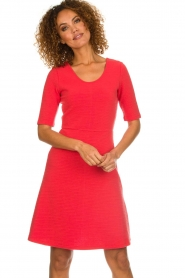 Set |  Skater dress Quinty | red  | Picture 2