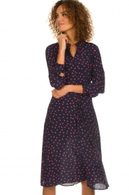 Set |  Dress with  polka dots | blue  | Picture 4