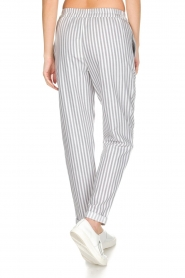 Knit-ted |  Striped pants Joan | Grey   | Picture 6