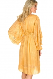Rabens Saloner |  Striped dress Elly | yellow  | Picture 6