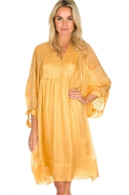 Rabens Saloner |  Striped dress Elly | yellow  | Picture 4