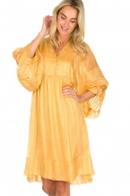 Rabens Saloner |  Striped dress Elly | yellow  | Picture 2