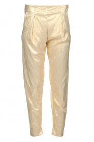 Rabens Saloner |  Wide leg plissé pants with metallic finish Mabina | gold  | Picture 1