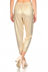 Rabens Saloner |  Wide leg plissé pants with metallic finish Mabina | gold  | Picture 5