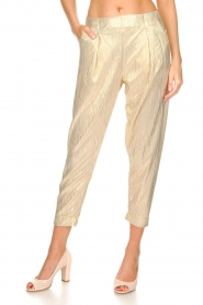 Rabens Saloner |  Wide leg plissé pants with metallic finish Mabina | gold  | Picture 3