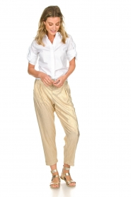 Rabens Saloner |  Wide leg plissé pants with metallic finish Mabina | gold  | Picture 2