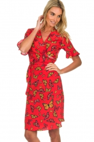 Freebird |  Printed wrap dress Butterfly | red  | Picture 4