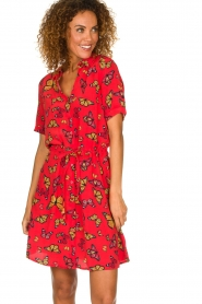 Freebird | Dress Suzy | red   | Picture 2
