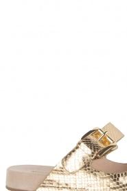 MICHAEL Michael Kors | Leren sandaal Sawyer | goud  | Afbeelding 6