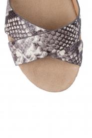 MICHAEL Michael Kors | Leren sandaal Sawyer | slangenprint  | Afbeelding 5