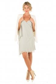 Hoss Intropia | Zijden jurk Romee | lichtgrijs  | Afbeelding 3