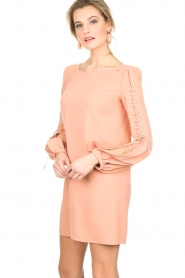 ELISABETTA FRANCHI |  Dress Rosa | nude  | Picture 4