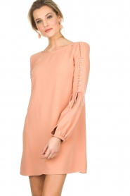 ELISABETTA FRANCHI |  Dress Rosa | nude  | Picture 2