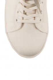 Leather sneakers Donna | multi
