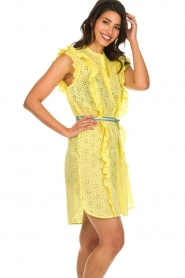 Becksöndergaard |  Dress with ruffles Haley | yellow  | Picture 5