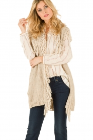 Hoss Intropia |  Cardigan Celeste | brown  | Picture 2