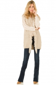 Hoss Intropia |  Cardigan Celeste | brown  | Picture 3