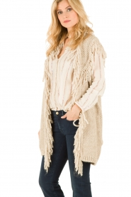 Hoss Intropia |  Cardigan Celeste | brown  | Picture 4