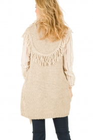 Hoss Intropia |  Cardigan Celeste | brown  | Picture 5