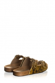 Toral | Leather sandals Angela | brown  | Picture 5