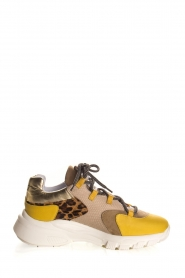 Toral |  Leather sneakers Talla | animal print