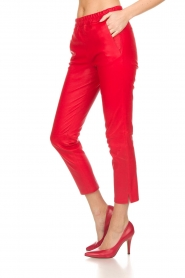 Arma |  Leather pants Provence | red  | Picture 4