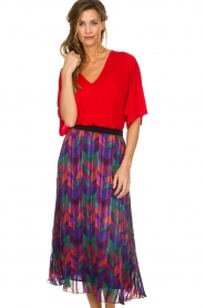 ba&sh |  Printed maxi skirt Paolo | multi  | Picture 2