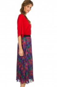 ba&sh |  Printed maxi skirt Paolo | multi  | Picture 4