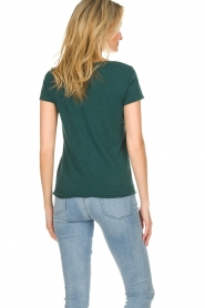 American Vintage |  Cotton T-shirt Sonoma | green  | Picture 5