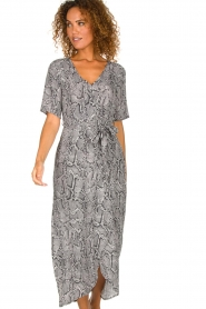 Freebird |  Snake print maxi dress Levi | grey  | Picture 2
