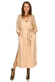 Rabens Saloner |  Maxi dress Eris | nude  | Picture 3