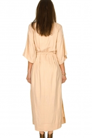 Rabens Saloner |  Maxi dress Eris | nude  | Picture 5