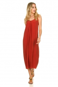 Rabens Saloner |  Maxi dress Brianna | red  | Picture 3