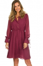 Les Favorites |  Dotted dress with ruffles Fiene | bordeaux  | Picture 4