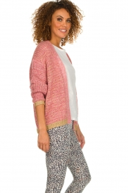 Les Favorites |  Knitted cardigan with glitter details Robbie | pink  | Picture 6