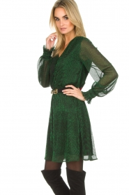 Dante 6 |  Dress Aida | green  | Picture 4