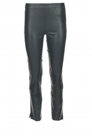 Dante 6 |  Leather leggings Ansh | blue  | Picture 1