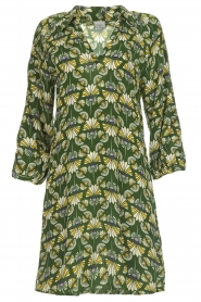 Dante 6 |  Printed dress Kravitz | green  | Picture 1