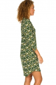 Dante 6 |  Printed dress Kravitz | green  | Picture 4