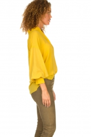Dante 6 |  Tunic top Collyn | yellow  | Picture 6