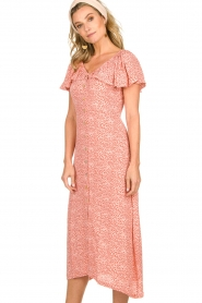 BEACHGOLD | Dress with dots Aria | pink  | Picture 5