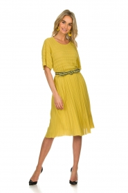 ELISABETTA FRANCHI |  Dress with waistbelt Amie | yellow  | Picture 3